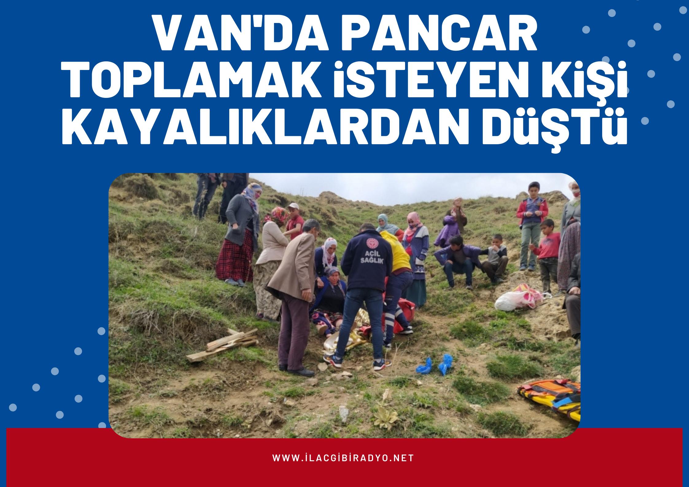 Van'da pancar toplamaya giden bir kişi kayalıklardan düştü