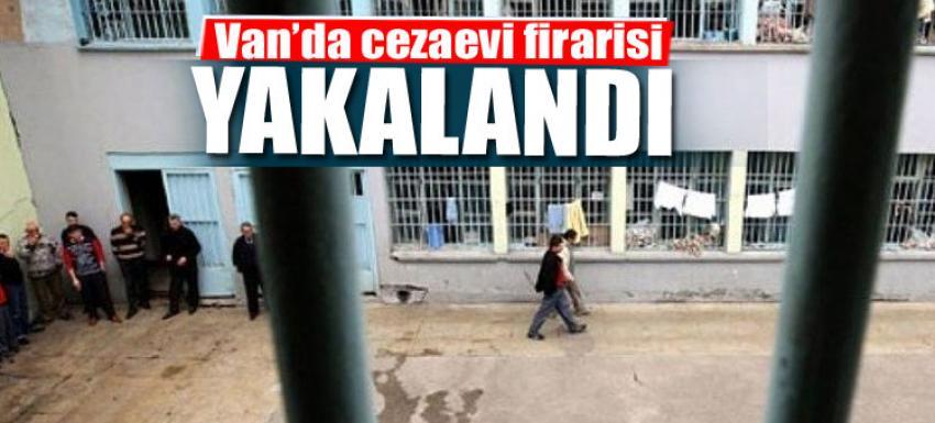 Cezaevi firarisi Van'da yakalandı