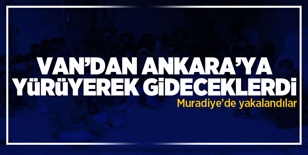 Van'da Ankara'ya giderken yakalandılar