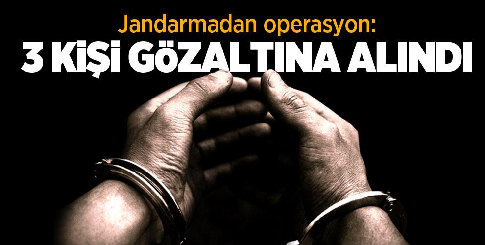 Jandarmadan operasyon: 3 kişi gözaltına alındı