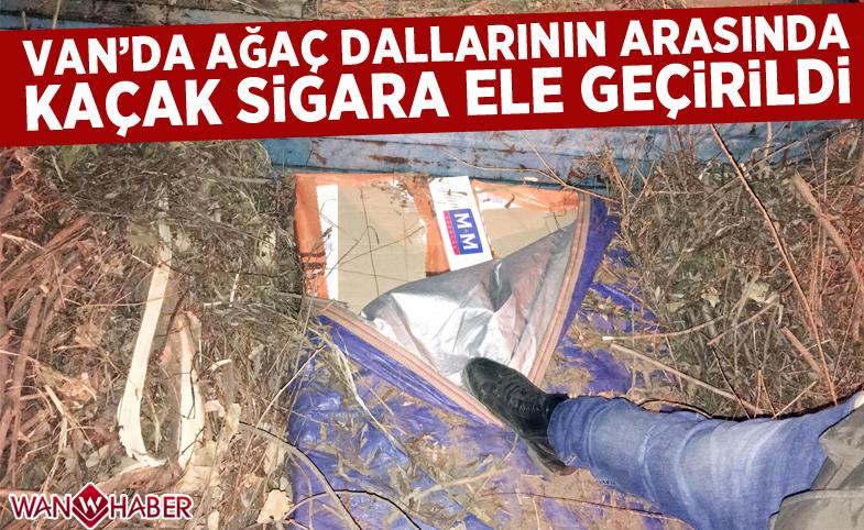 Van'da ağaç dallarının arasında kaçak sigara ele geçirildi