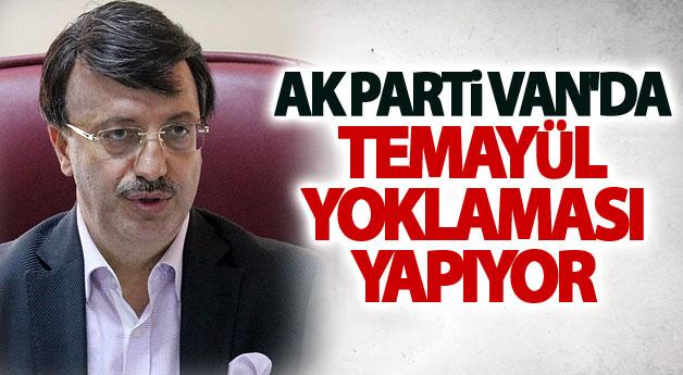 AK Parti Van'da Temayül yoklaması yapıyor