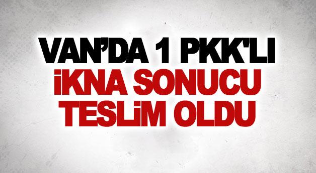 Van'da 1 PKK'lı ikna sonucu teslim oldu