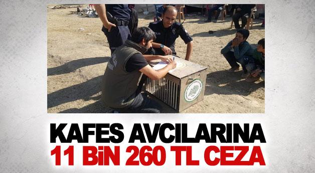 Kafes avcılarına 11 bin 260 TL ceza