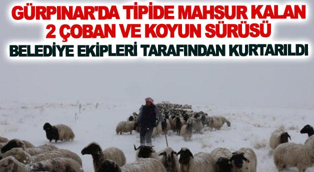 Tipide mahsur kalan 2 çoban ve koyun sürüsü belediye ekipleri tarafından kurtarıldı