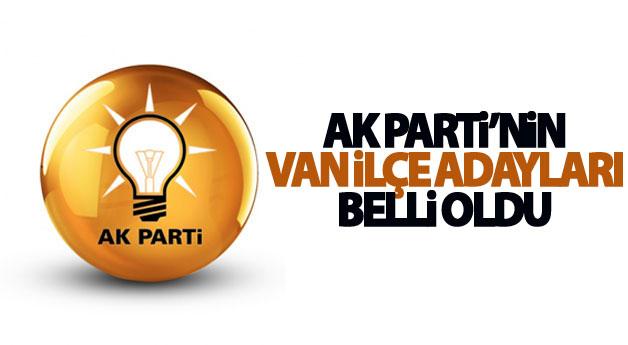 Ak Parti'nin açıklayacağı iddia edilen Van adayları