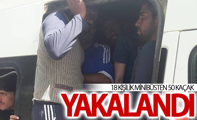 Van'da 18 kişilik minibüste 50 kaçak göçmen yakalandı